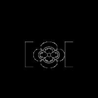 五代目工藤會(ごだいめくどうかい)|福岡県【指定暴力団】